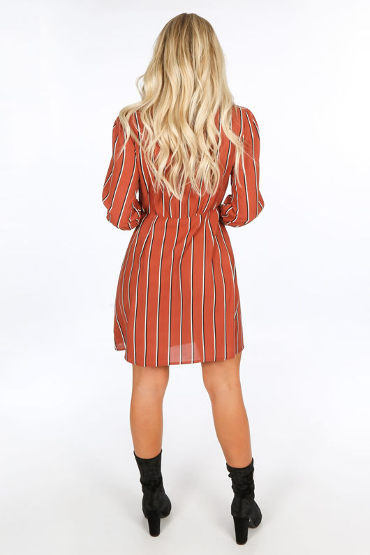 Rust Striped Print Mini Dress With Button Detail