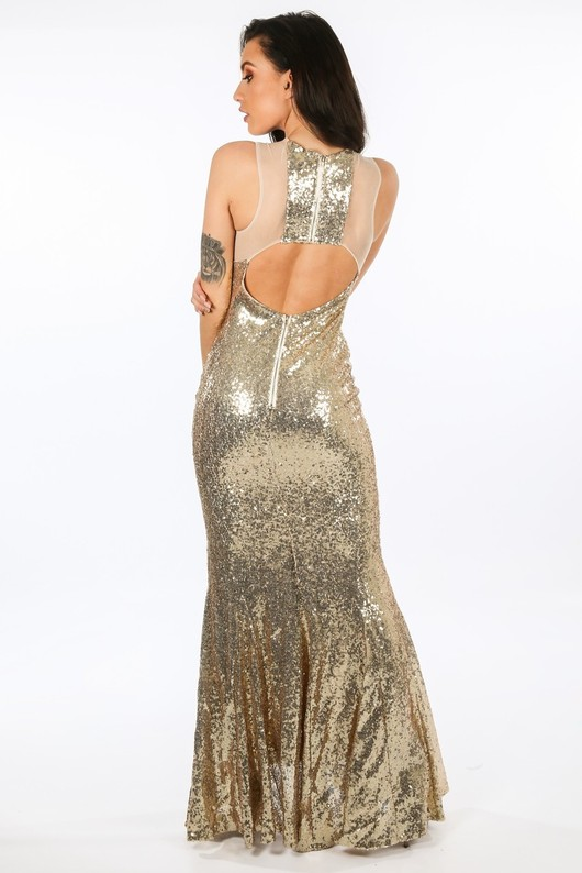 r/393/W1053-_Sequin_And_Mesh_Maxi_Dress_In_Gold-3__43413.jpg