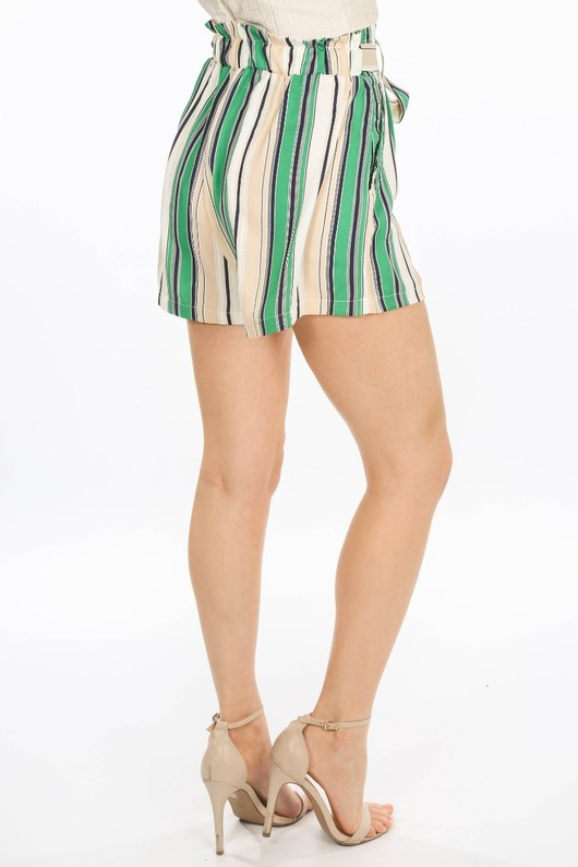 o/001/W1476-1-_Striped_Paper_Bag_Shorts_In_Green-5__69503.jpg