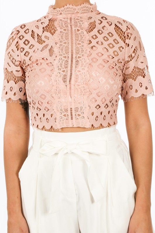 s/918/W1628-_Lace_Crop_Top_With_Bralet_Lining_In_Pink-5__69893.jpg