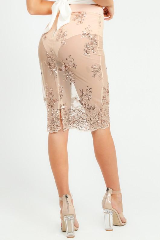 m/542/W2350-_Sequin_Mini_Skirt_In_Beige-4__09478.jpg