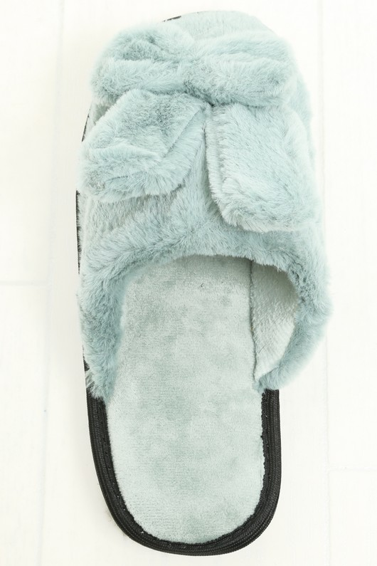c/616/slipper-mint-5__63824.jpg