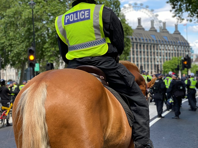 Police horse in London
