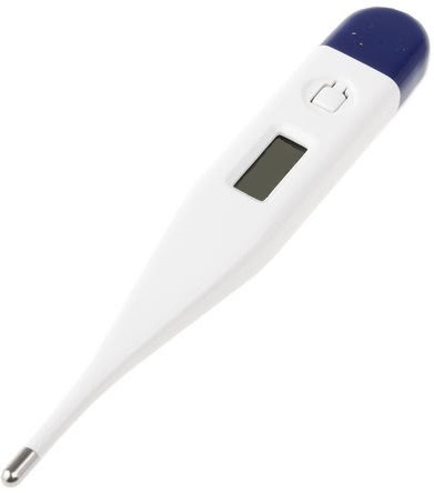 Oral Clinical Thermometer