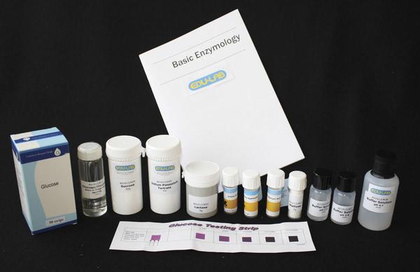 Basic Enzymology Kit