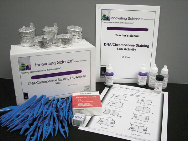 Dna /Chromosome Staining Lab Activity