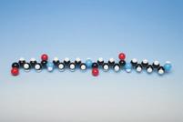 Molecular Model Nylon 6.6