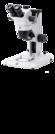 Novex Explorer Stereo Microscope