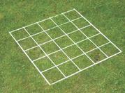 Grid Quadrat 25 squares