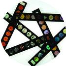 Microslide Your Senses (Single)