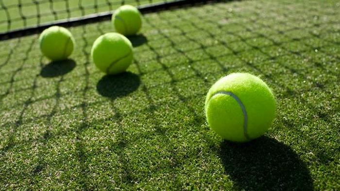 윔블던 테니스 선수권 대회