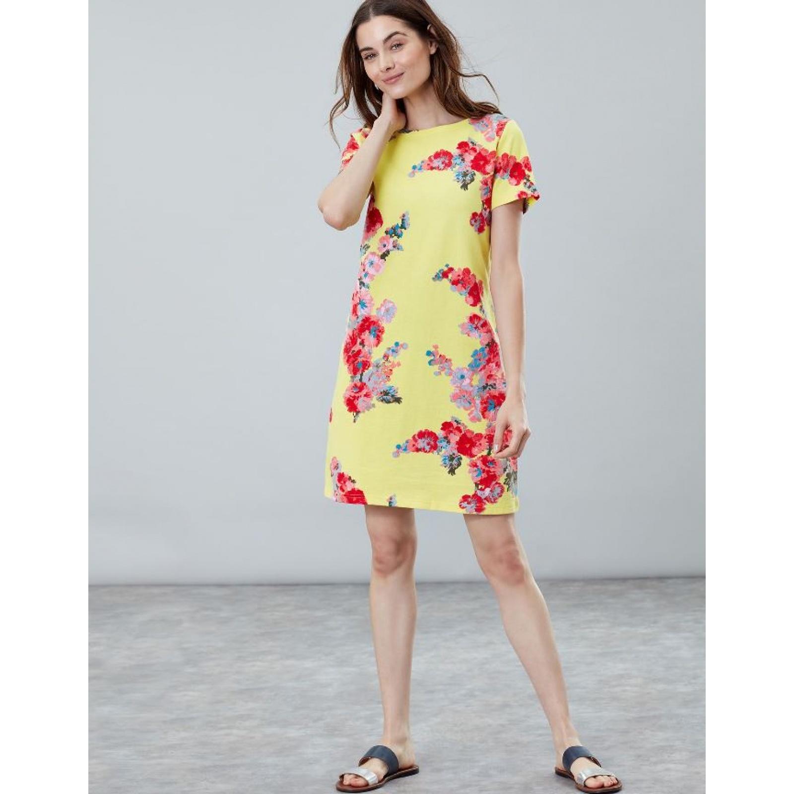 Joules-Riviera-Print-T-Shirt-Dress-with-Short-Sleeves-SS19 thumbnail 15