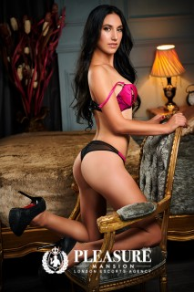 Julia - Escorts Paddington