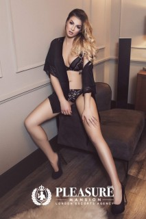 Haven | Escorts Earls Court