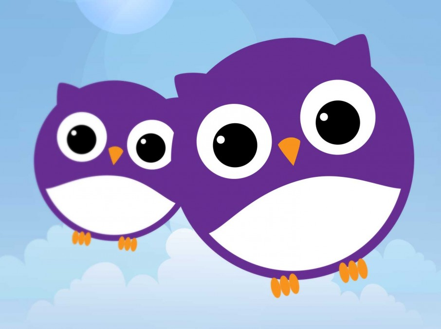 Boots OWL Brand Design