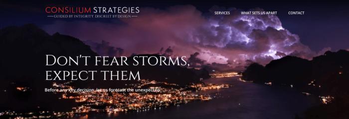 Consilium Strategies What Sets Us Apart