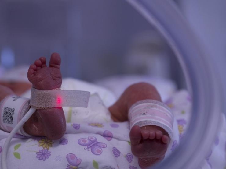 A Baby's Feet