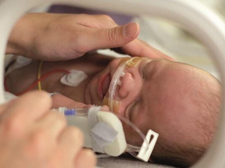Parent comforting baby in incubator