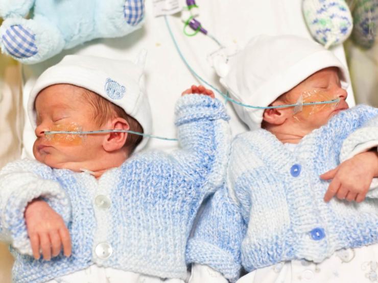 Sibling babies in hospital
