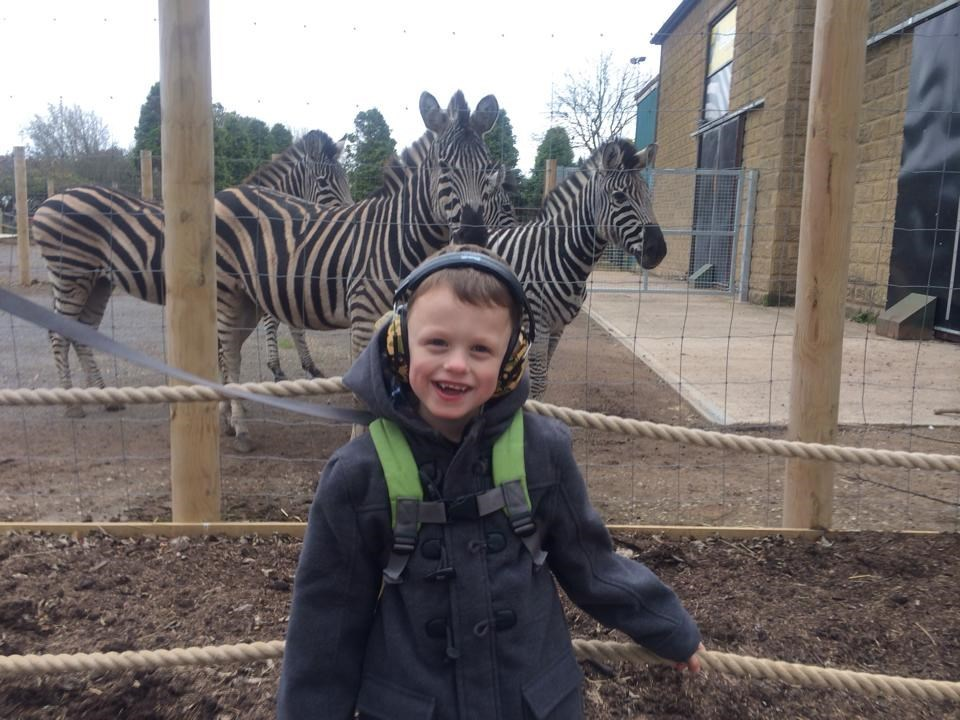 An Older Oliver Visiting A Zoo