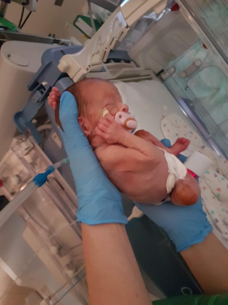 Elizabeth being held with gloves near incubator