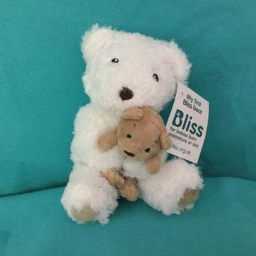Photo of Bliss bear
