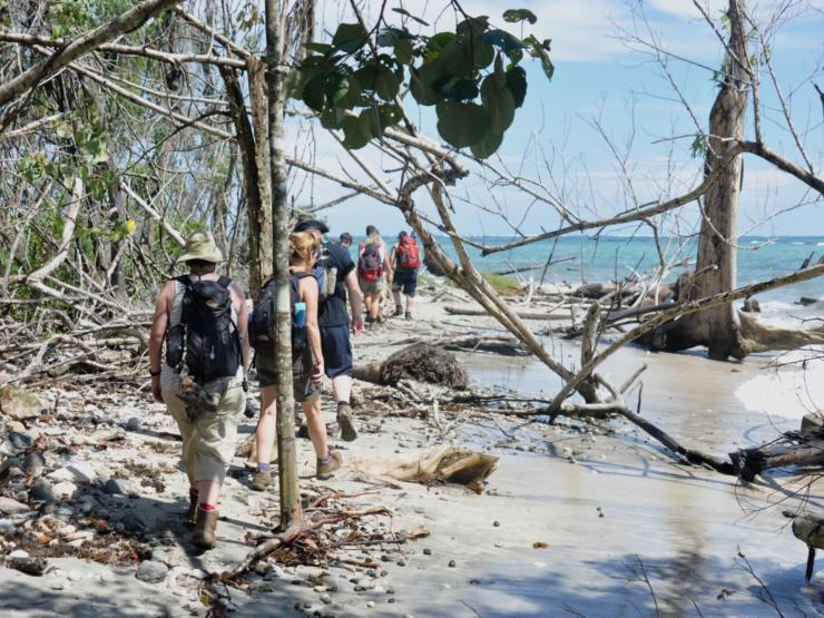 Trekking along the beach