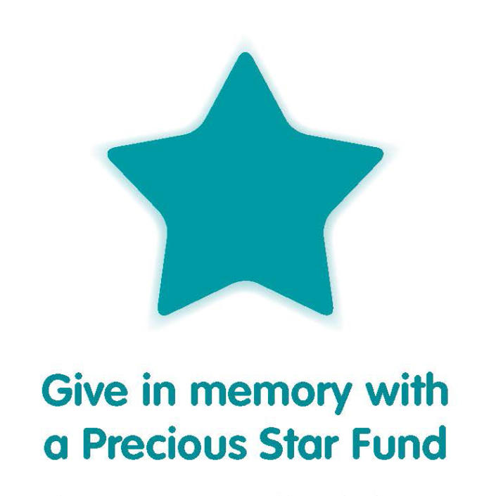 Teal star from Precious Star Fund logo