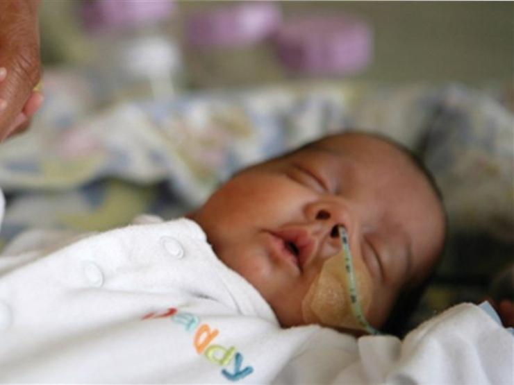 Adult holding hand of premature baby in neonatal care