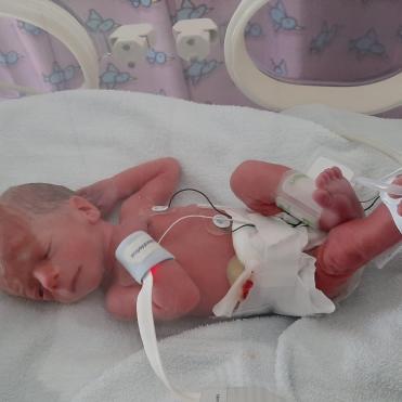 Miles in the incubator