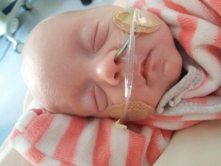 Baby wearing oxygen in neonatal care