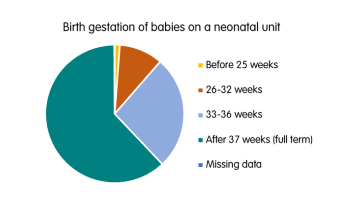 Neonatal admissions by gestational age pie chart
