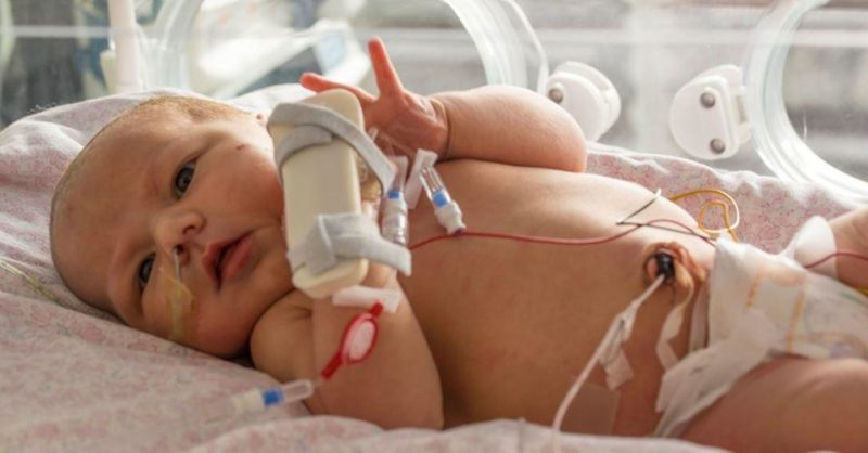 For babies born premature or sick | Bliss