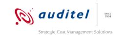 Auditel- Effective Cost Control