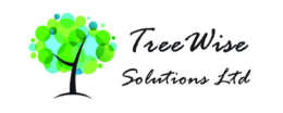 TREEWISE SOLUTIONS LIMITED