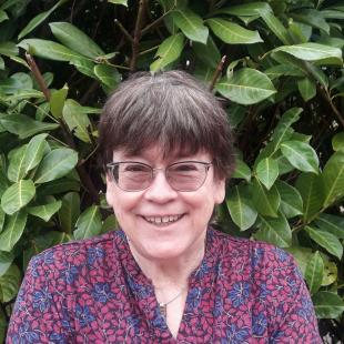 Judy Noah