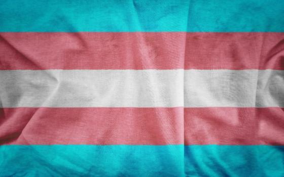Flag Resize