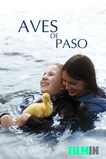 Aves de Paso (2015)