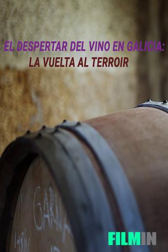El despertar del vino en Galicia: la vuelta al terroir