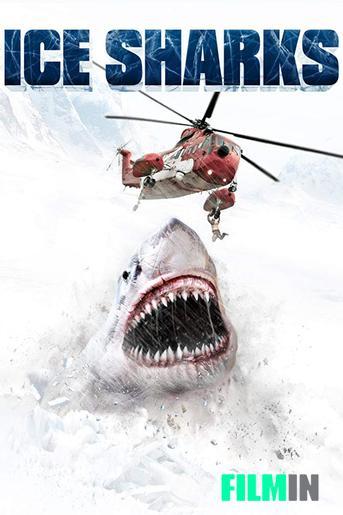 Tiburones de hielo