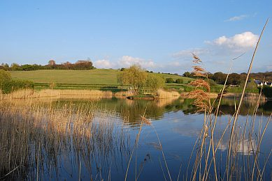 BEST FISHING LAKES IN LONDON - 47 Fisheries Listed
