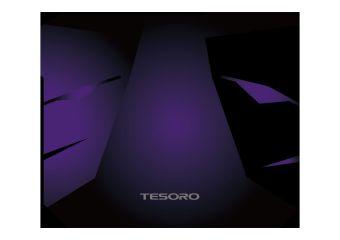 Tesoro Aegis X3 TS-X3 Large Size