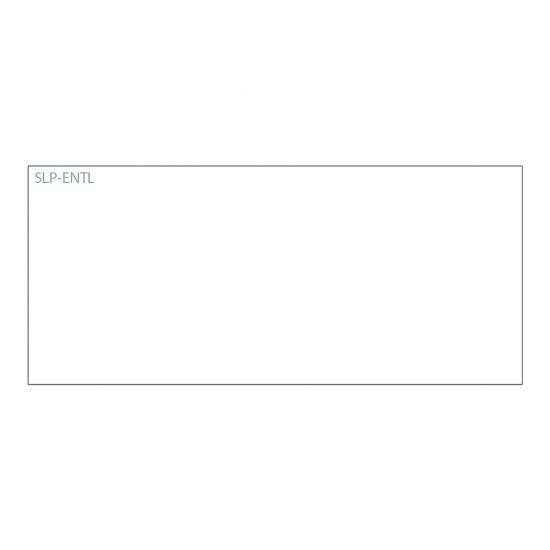 Seiko Instruments SLP-ENTL - navneskiltkort - 250 kort