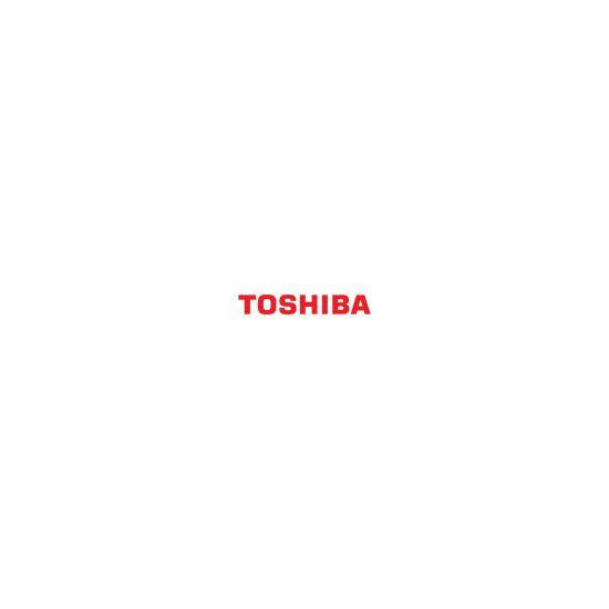Toshiba DFC25-C - cyan - developer