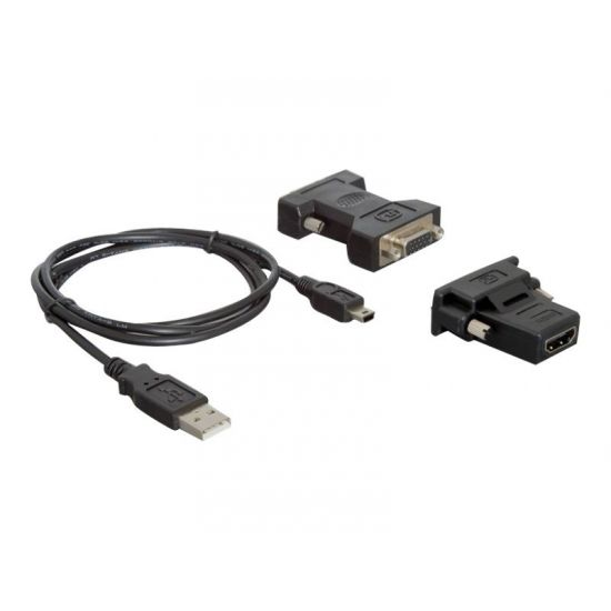 DeLOCK - ekstern videoadapter - 128 MB