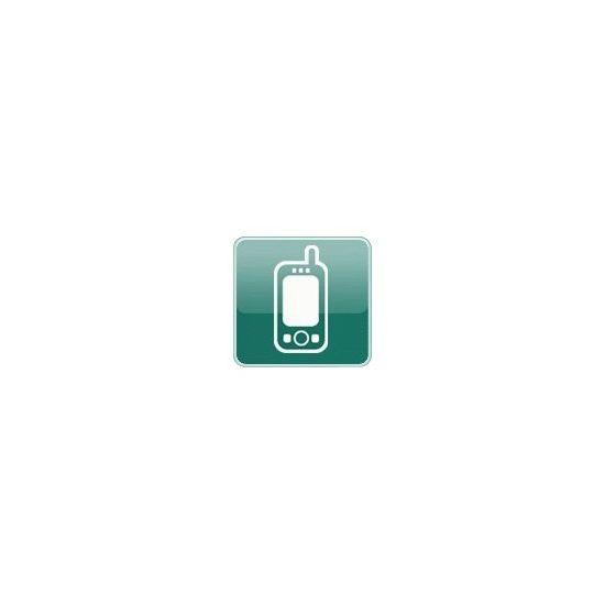 Kaspersky Endpoint Security for Smartphone - fornyelse af abonnementlicens (2 år) - 1 licens