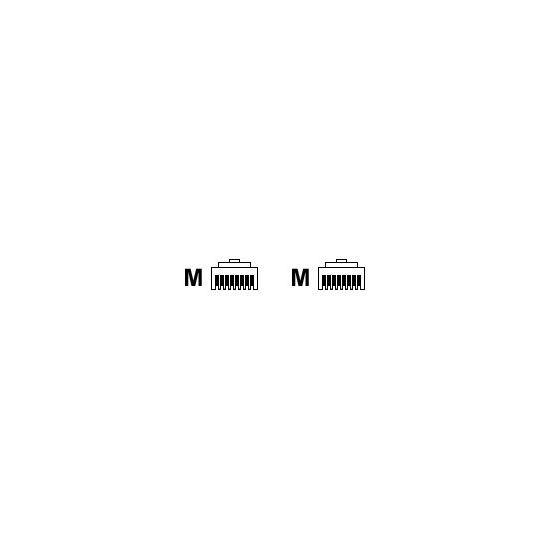 Ricoh modemkabel