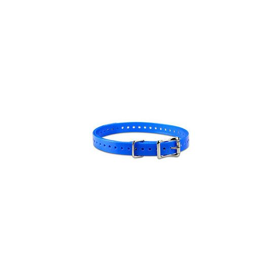 Astro DC50 Repl. Band, Blue