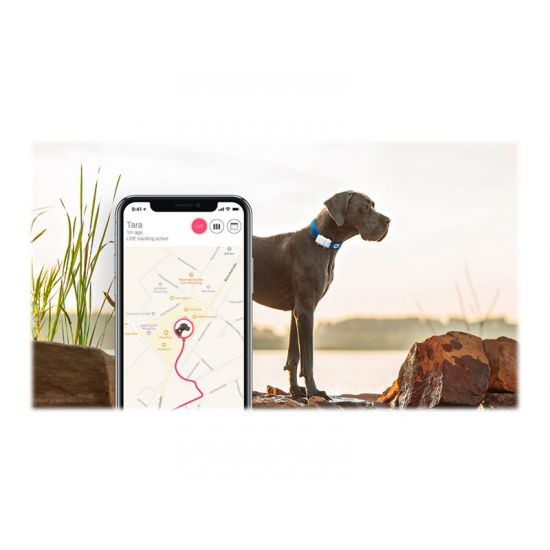 Tractive GPS XL for Dogs - GPS sporingsenhed