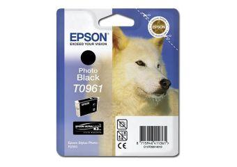 Epson T0961